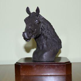 Tête de cheval arabe 3/4 face