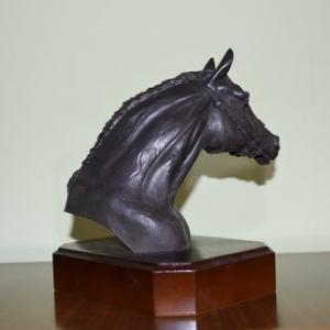 tête de cheval arabe profil droit