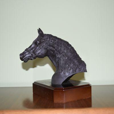 Arabic horse head left profile